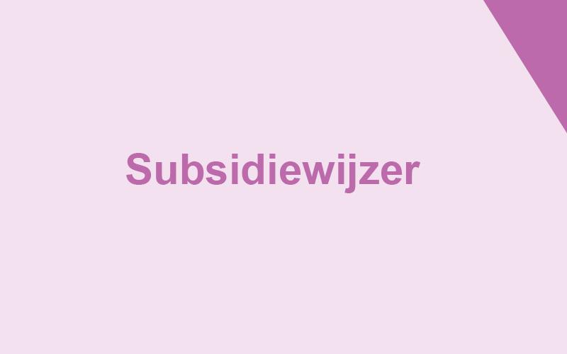 desubsidiwijzer_th.jpg