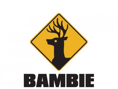 toekenningen/i_5067/bambie.jpg
